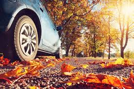Herbst19